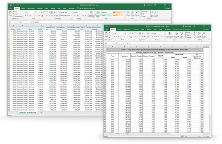 List of demographic variables on Excel.