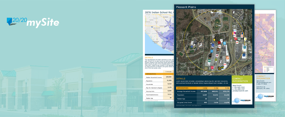 Site Marketing Flyer examples showing maps, logos and demographics.